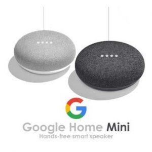 google-home-mini-pakistan_1